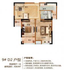9#D2户型两房两厅