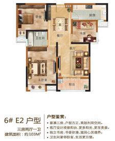 6#E2户型三房两厅