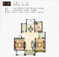 G-B1户型三室两厅两卫
